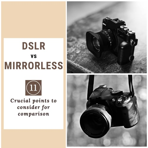 DSLRs vs Mirrorless Cameras